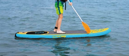 stand up paddle k9 zray action
